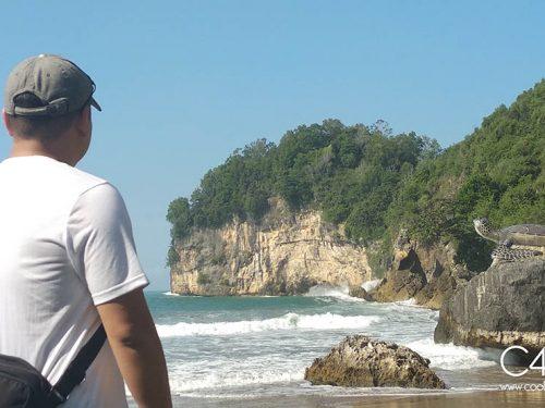 Pantai Taman Pacitan